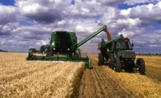 La soja propone una caída, pero se mantiene cerca de los u$s 390 por tonelada