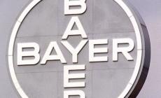 Bayer oficializó la oferta de u$s 62.000 millones para quedarse con Monsanto