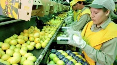EEUU, más cerca de importar limones argentinos