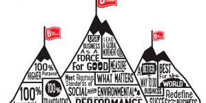 Más allá de las ganancias: Sustentabilidad, Medioambiente y las Empresas B