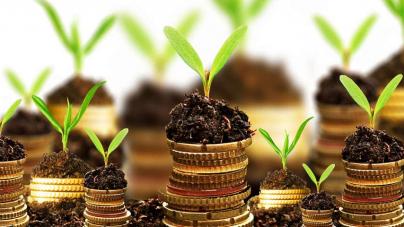 Inversiones para la segunda mitad de agosto y para septiembre