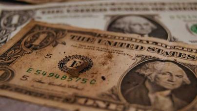 Dólares deteriorados, rotos, cabeza chica o viejos. ¿Sirven? ¿Qué hacer con ellos?
